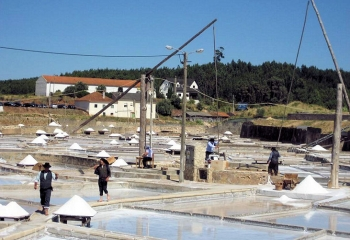 Salinen in Rio Maior